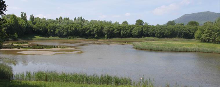 Plaiaundiko Parke Ekologikoa, nazioarteko altxor naturala