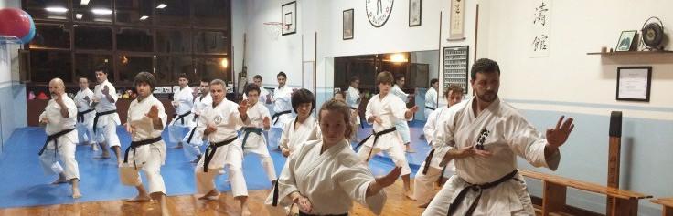 Karatea, bizitzarako